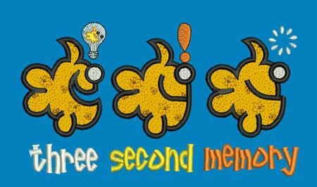 three_second_memory1
