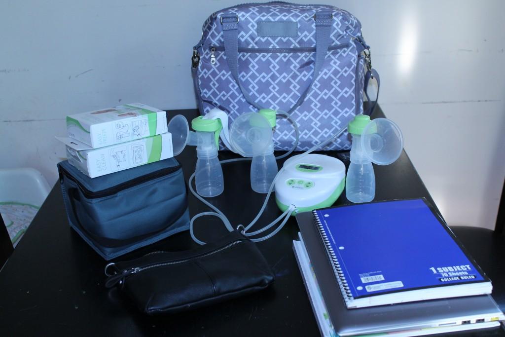 Sarah Wells Breast Pump Bag